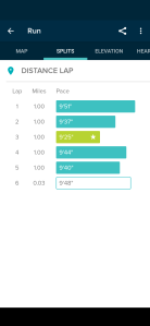 screenshot of running stats